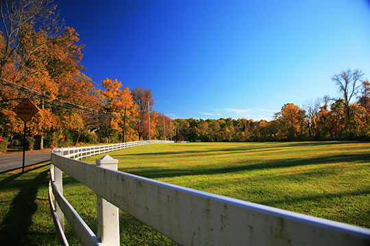 Iron & Steel Heritage   Pine Creek Park